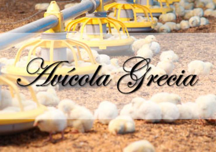 Avícola Grecia